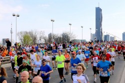 Vienna City Marathon 2019<small>© Wikimedia Commons / Bwag [CC BY-SA 4.0]</small>