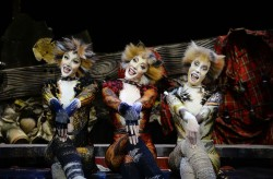 Cats at the Ronacher - A Musical Legend Returns<small>© VBW/Produktionsfotos CATS 014 - Alessandro Pinn</small>