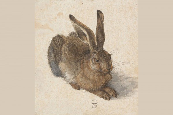 """Albrecht Dürer's most famous of all nature studies is the watercolour """"Young Hare"""" from 1502.<small>© Albertina, Vienna</small>"""