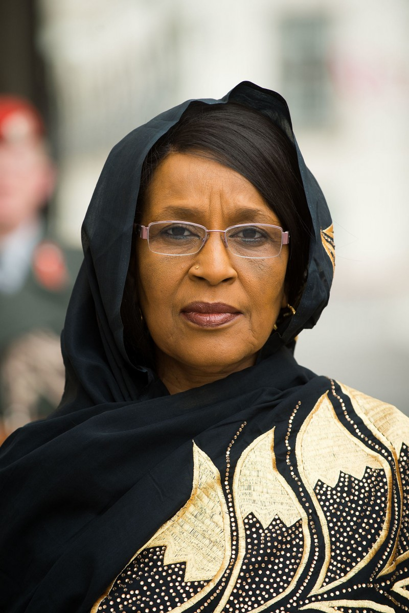 Ambassador of the Republic of Chad to Austria, H.E. Mrs. Mariam Ali Moussa<small>© www.bundespraesident.at / Peter Lechner and Clemens Schwarz / HBF</small>